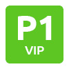 P1 VIp Brussels Aiport